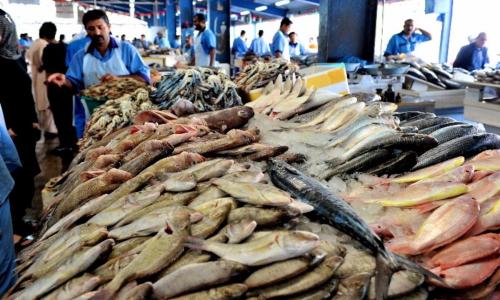 Pochissimi lo mangiano ma questo pesce buonissimo combatte il colesterolo cattivo e aiuta la vista
